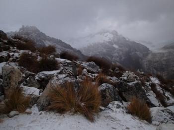 P7061087降雪.JPG